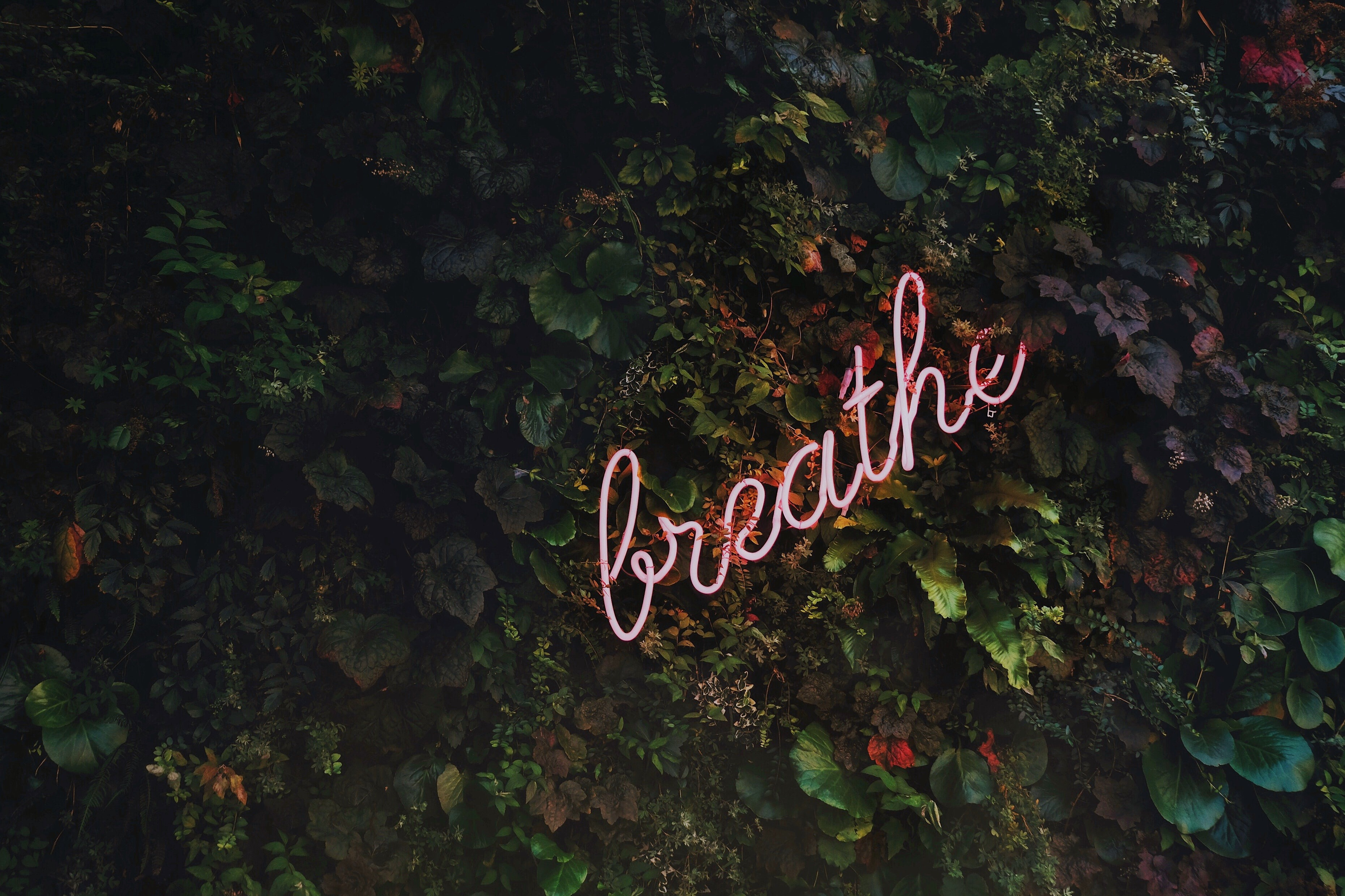 Making Self-Care a Priority in 2019